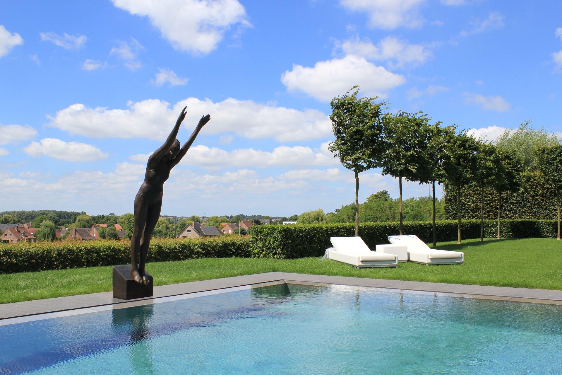 Kunst aan het zwembad, duikster